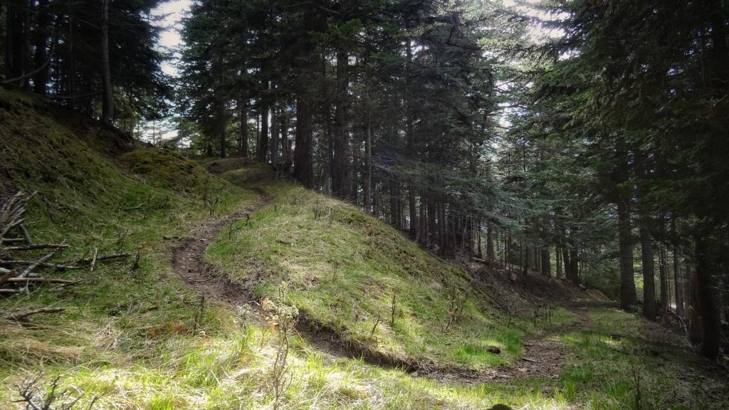 Ascensión Pirineo