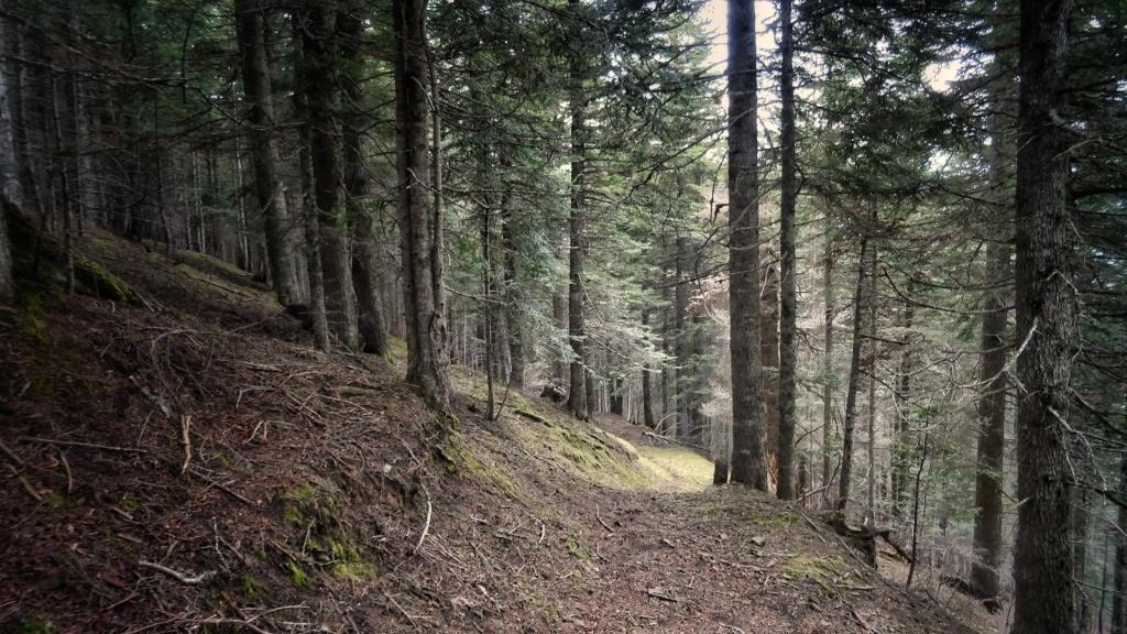 Actividad de Turismo Activo en el Pirineo